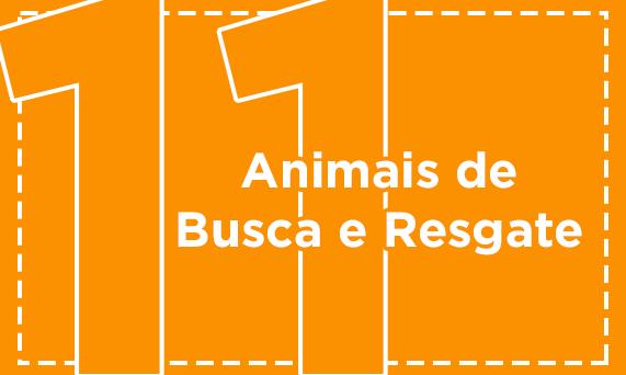 Animais de Busca e Resgate