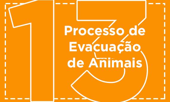 Processo de Evacuação de Animais